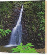 Waterfall-1-st Lucia Wood Print