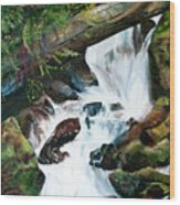 Waterfall 1 Wood Print