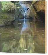 Waterfall And Reflection Wood Print