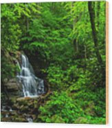 Waterfall And Rhododendron In Bloom Wood Print