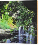 Waterfall And Rhododendron Wood Print