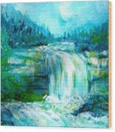 Waterfall At Pont Espagna Wood Print