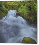 Waterfall At Shepperds Dell Falls Wood Print