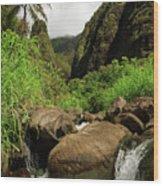 Waterfall At The Iao Needle Wood Print