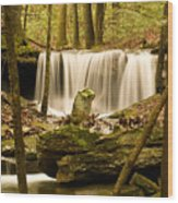 Waterfall At The Ruins Wood Print