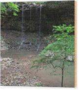 Waterfall Base Wood Print