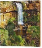 Waterfall Beauty Wood Print