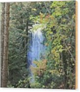 Waterfall Beyond The Trees Wood Print