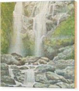 Waterfall Wood Print by Charles Hetenyi