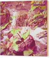 Waterfall Garden Pink Falls Wood Print