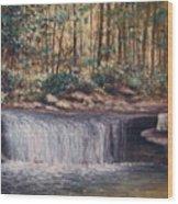 Waterfall Glory Wood Print
