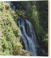Waterfall I Wood Print