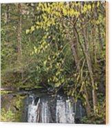 Waterfall In A Park, Whatcom Creek Wood Print
