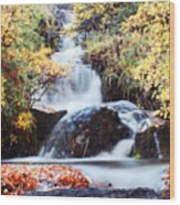 Waterfall In Autumn Wood Print