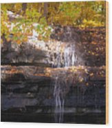 Waterfall In Creve Coeur Wood Print