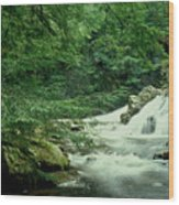 Waterfall In Hemlock Forest Wood Print