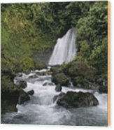 Waterfall In La Fortuna Wood Print