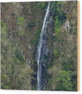 Waterfall In The Intag 2 Wood Print