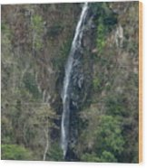 Waterfall In The Intag 3 Wood Print