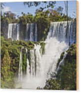 Waterfall In The Jungle Wood Print