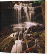 Waterfall Mcconnells Mills State Park Wood Print