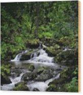 Waterfall Medley Wood Print