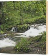 Waterfall Oasis Wood Print