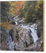 Waterfall Off Blue Ridge Parkway Wood Print