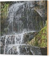 Waterfall On Mount Ranier Wood Print