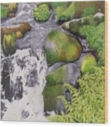 Waterfall On Skye Wood Print