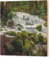 Waterfall Reverie Wood Print