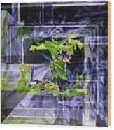 Waterfall Vortex Wood Print
