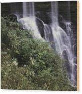 Waterfall Wildflowers Wood Print