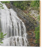 Waterfall With Green Leaves Wood Print