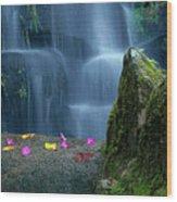 Waterfall02 Wood Print by Carlos Caetano