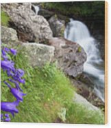 Waterfalls And Bluebells Wood Print