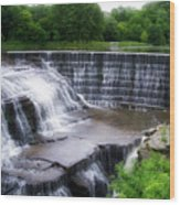 Waterfalls Cornell University Ithaca New York 05 Wood Print