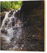 waterfallScoop Wood Print