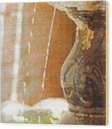Waterfountain Wood Print