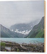 Waterfowl Lakes Wood Print by Adnan Bhatti