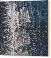 Waterfront Fountain Black Charleston  Wood Print by Lori Kesten