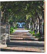 Waterfront Park Charleston Wood Print by Lori Kesten