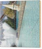 Waterfun  Wood Print