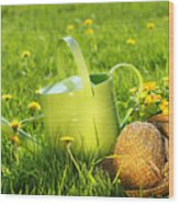 Watering Can In The Grass Wood Print by Sandra Cunningham