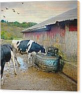 Watering Hole Wood Print