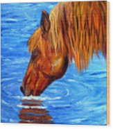 Watering Hole Horse Painting Wood Print