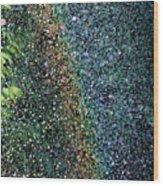 Watering Rainbows Wood Print