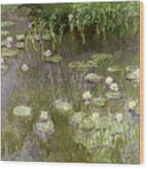 Waterlilies At Midday Wood Print