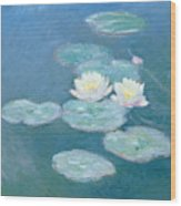 Waterlilies Evening Wood Print