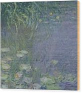 Waterlilies Morning Wood Print